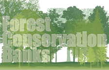 Forest Conservation Bank